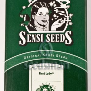 First Lady Regular Seeds