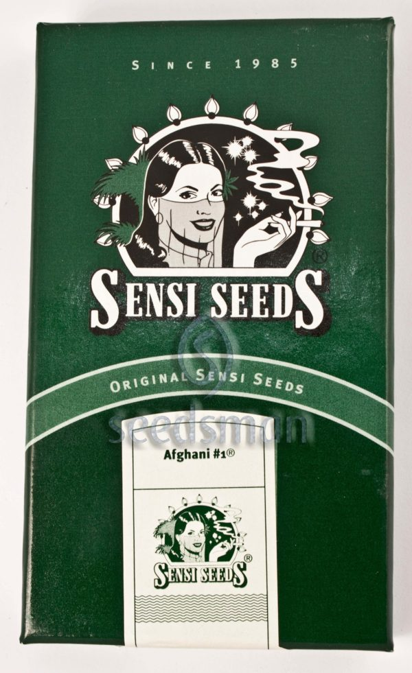 Afghani #1 Regular Seeds